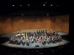 Aufstellung fürs Idyll: Die Wiener Philharmoniker noch ohne Lorin Maazel