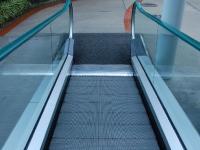 Im Loro Park gibt es sogar eine Rolltreppe!